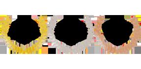 logo-medaille